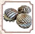 Сдобное печенье Жемчужина