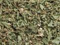 Трава яснотки сушеная (Lámium álbum)