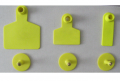 Ушаная бирка желтая, 18х53 мм