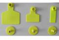 Ушаная бирка желтая, 58х70 мм