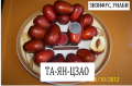 Саженцы зизифуса унаби сорт Та-ян-цзяо  2х летний привитый саженец  китайский финик жожоба  Zizуphus jujuba Mill.