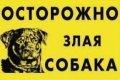 """Наклейка """"Осторожно ,злая собака"""" ротвейлер полноцвет 2703"""