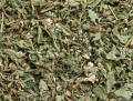 Ortie herbe séchée