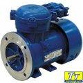 Электродвигатель АИММ225м8 30квт/750