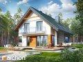 Проект Дом в аурорах 2