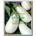 Семена Урожай баклажан Бибо F1, 5 семян