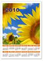 Календари: настенные, настольные, квартальные, карманные.