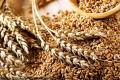 Пшеница, ячмень, кукуруза, соя, рис, cахар тростниковый -Индия, Бразилия