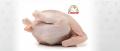Мясо та субпродукты индейки- замороженное и охлажденное