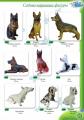 Фигуры садово-парковые, Собаки, высота от 40 до 95 см