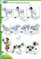 Фигуры садово-парковые, Овечки, Коровки, Пастух, высота от 30 до 85 см