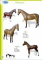 Фигуры набивные Лошади
