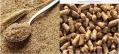 ПОКУПАЕМ отруби пшеничные