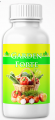 Garden Forte (Forte Garden) - bio-fertilizer for the garden