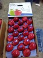 Apples Red Delicious directly from Turkey