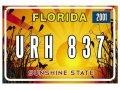 Американский декоративный номер Флорида (Изготовим за 1 час)