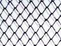 Сетка РАБИЦА, 25х25 мм