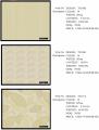 Ткани интерьерные T9106D, T9106E, T9107A Color 1 для пошива штор, гардин, под заказ из Китая