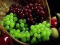 Hydrolizowany skórki winogron
