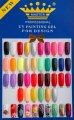 Гель-Краска (Master Professional UV Painting Gel ), 5 грамм