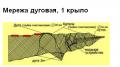 Мережа дуговая, 1 крыло для рыболовли