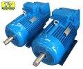 Электродвигатель МТН (F) 411 22кВт/1000