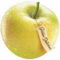 Саженцы яблонь Гольден делишес