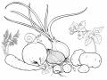 Выращивание овощей, зерновых и технических культур. Принемаем заказы на урожай 2013 года (лук,морковь,помидор)