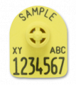 Ear tags for pigs license