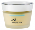 The delustring day fat, combined, problem skin cream.