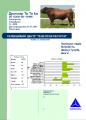 Сперма быков Англерской породы