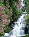 Воды родниковые Water
