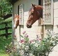 Окна для конюшни