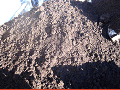 Vegetable field soil (the top layer from fields)