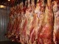 La carne de vaca, la carne, las semifanfarrias de vaca