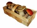 Корзинка для грибів 1кг, купить в Іване Пусте, Тернопільська обл, заказать, не дорого