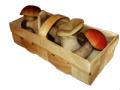 Корзинка для грибов 250г, Тара для ягод, ЧП, купить, цена, Украина