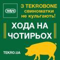 ТЕКРОБОН - свиноматки не хромают!