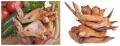 Крылышки куриные Крылья куриные Прилуцкий мясокомбинат