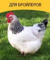 Комбикорм для цыплят-бройлеров, бройлеров
