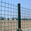 Заборы из сварной сетки Euro Fence 50*50*2,5 с ПВХ покрытием