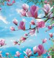 Photowall-paper Magnolia 2