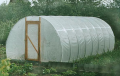 The greenhouse a tunnel 'Tomato' under a film