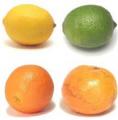 Апельсины, лимомны, фрукты цитрусовые, опт
