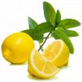 Fragrance Lemon lime