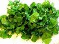 Sale of greens across Ukraine, Cilantro wholesale in Melitopol