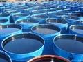Битумы нефтяные дорожные