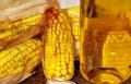 Масло кукурузное,фильтрованное 1-го холодного отжима