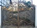 Gate shod Ukraine