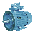 The explosion-proof motor for the gas industry of AIMM 250 S4 (75.0 kW. 1500 RPM.)
